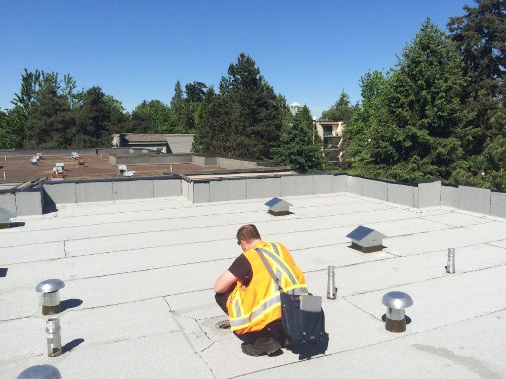 What condition is your roof in? -