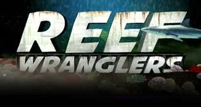 reef-wranglers.jpg