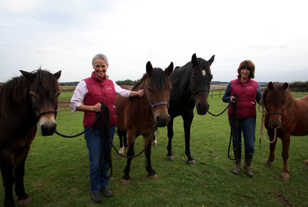 Susie Little and Jo Simpson, Tower House Horses
