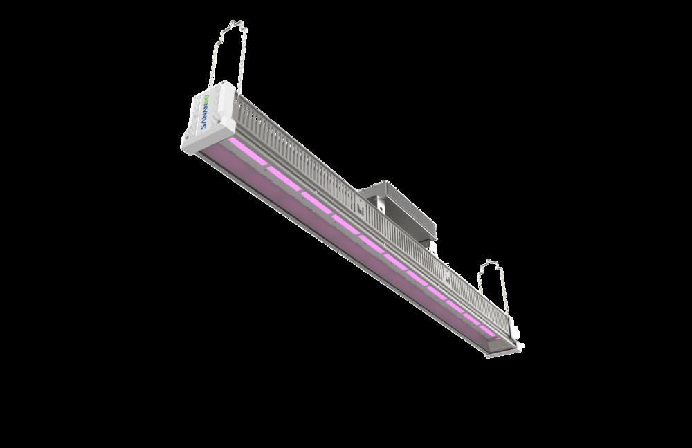 Hawk LED Light