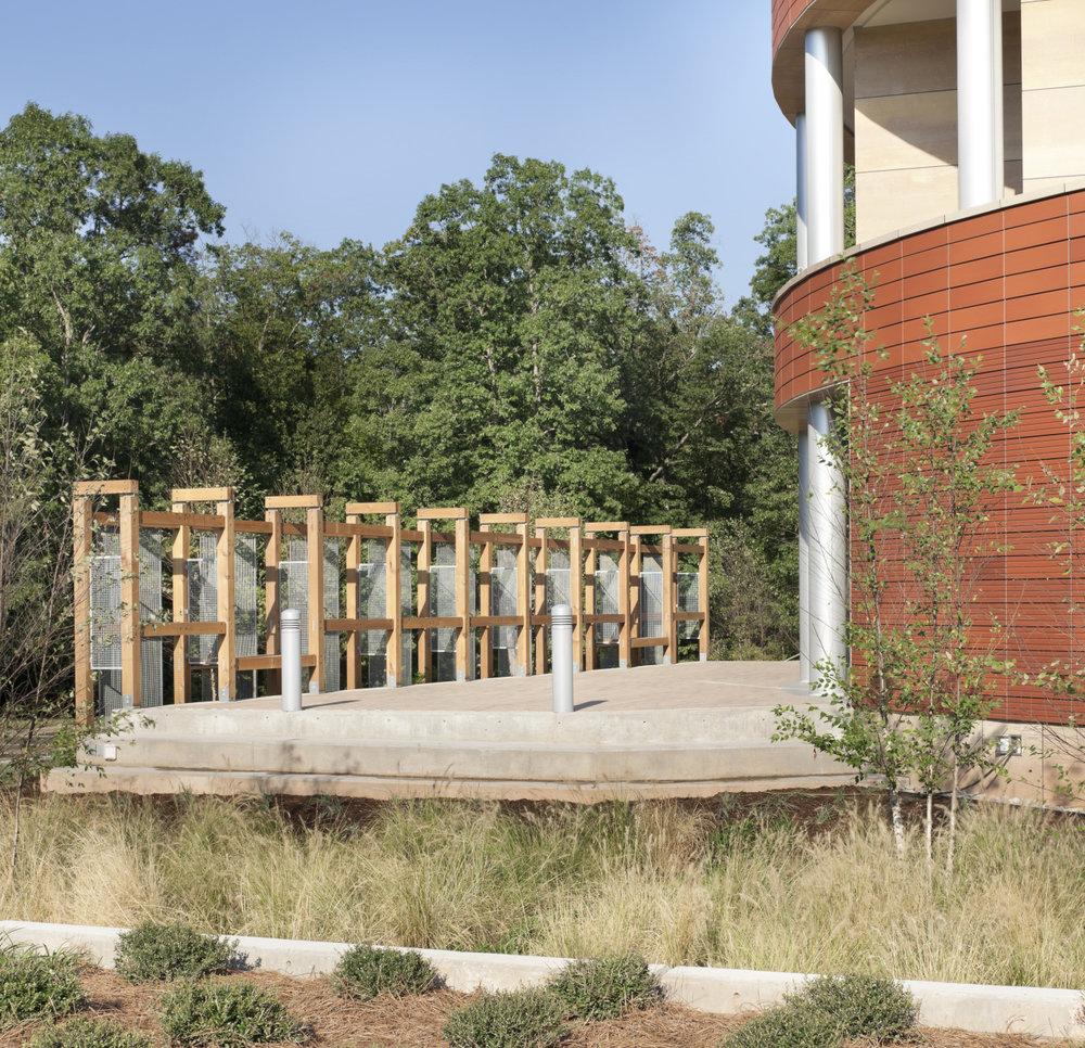 North Carolina Biotechnology Center photo rain garden