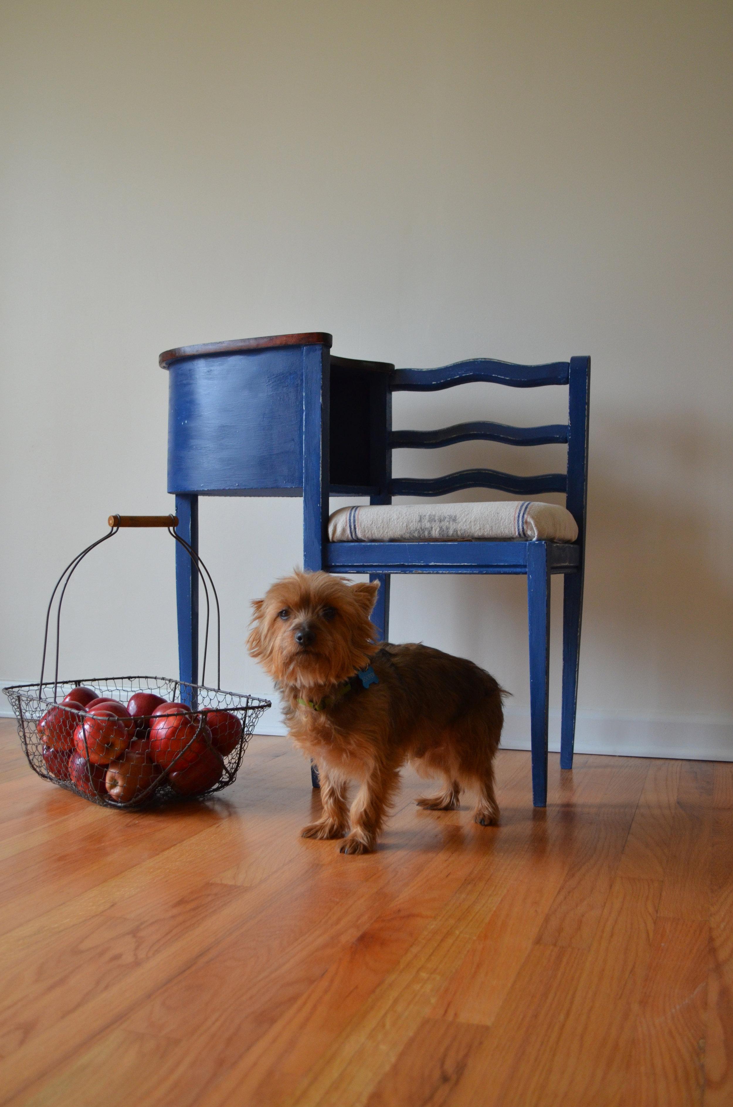 Annie Sloan Gossip Bench Napoleonic Blue Chalk Paint1