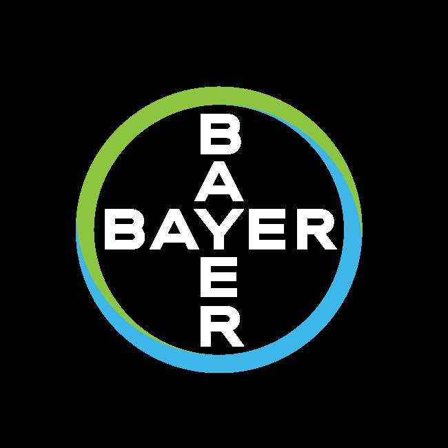 Bayer-Cross_Rev_on-screen_RGB.png