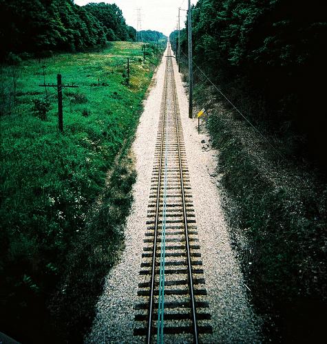 Railroad Weeds
