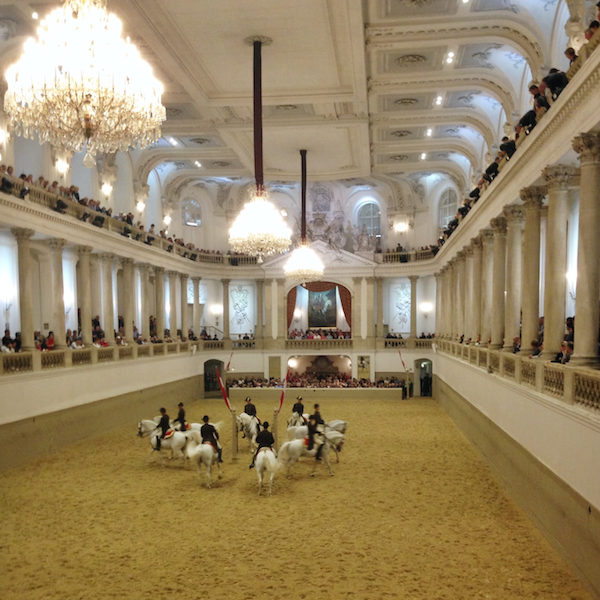 Lipizzaner Stallions at the Spanish Riding School | Europe Trip - Highlights from Vienna | kaileenelise.com