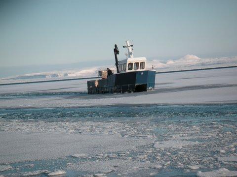 Arctic Char_Landscape_3.jpg