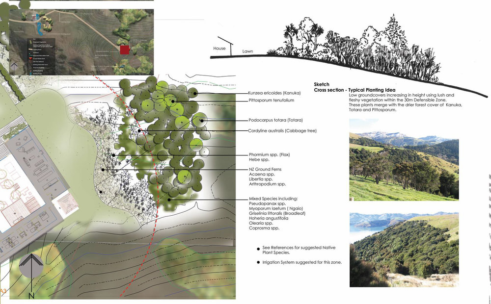 Tikao Bay: Advice to Christchurch City Council on mitigation planting for a dwelling to meet consent requirements.