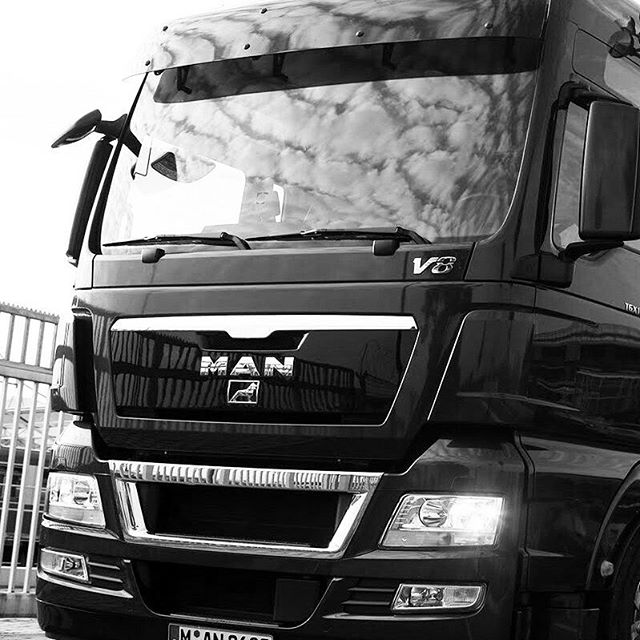 #incognito #unmarked #member #fineartshipping #MoveArtDesign #truckspotting #eurotruck #arthandler #arthandling