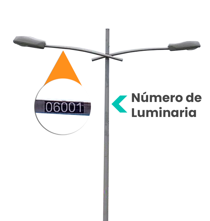 No.-Luminaria-2.png