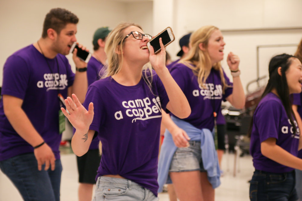 College - - Learn skills to elevate your college group- Gain insights into the career options of a cappella and the professional music industry- Get an edge for ICCA competition- Network with the industry's best for future projects, or with other dynamic singers to start the next big pro group!