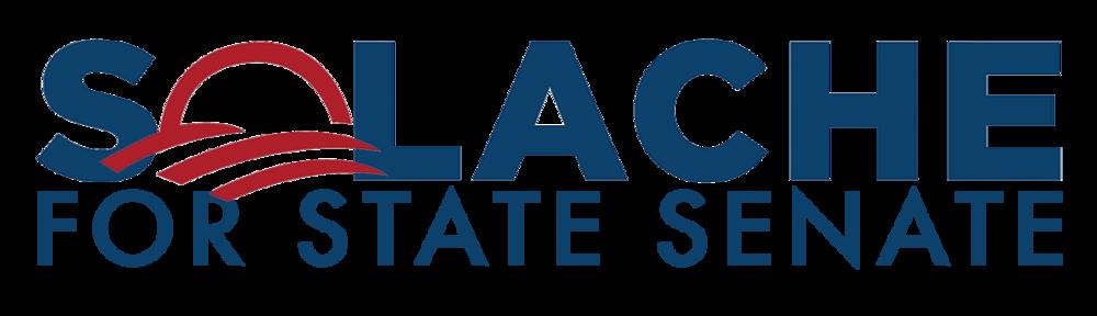 SolacheForStateSenate-BrandColors.png