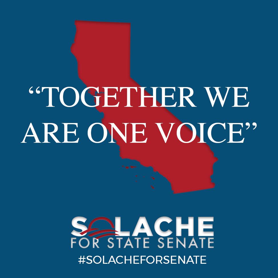 SolacheForSenate-Together.png