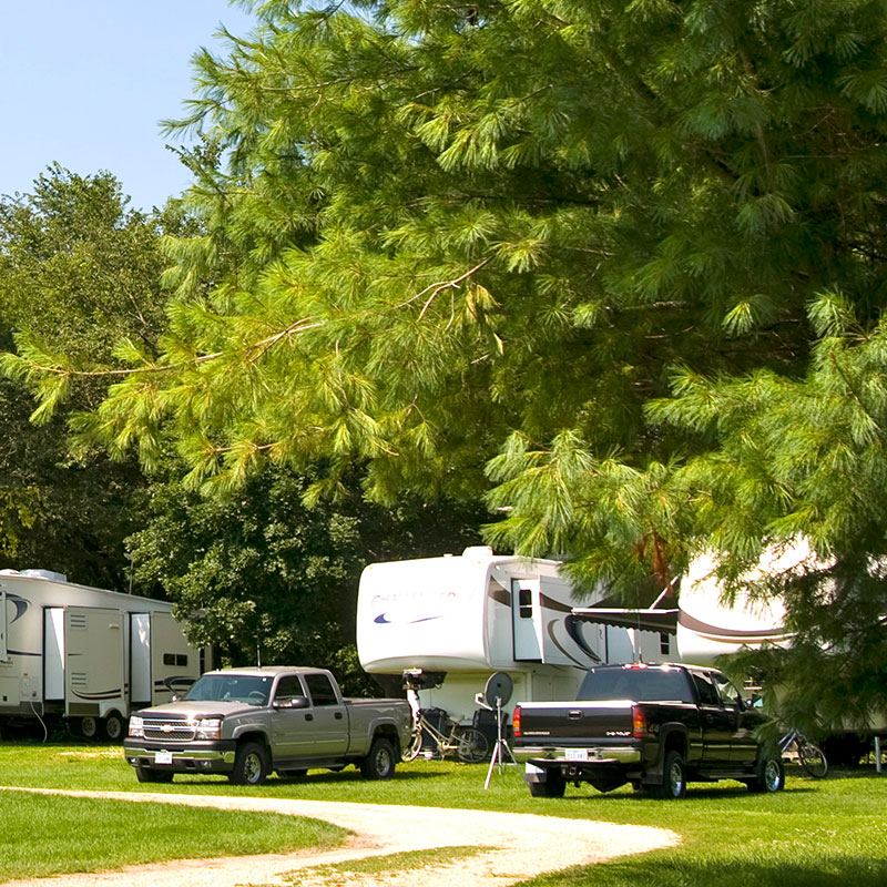pet-img_book-campground.jpg