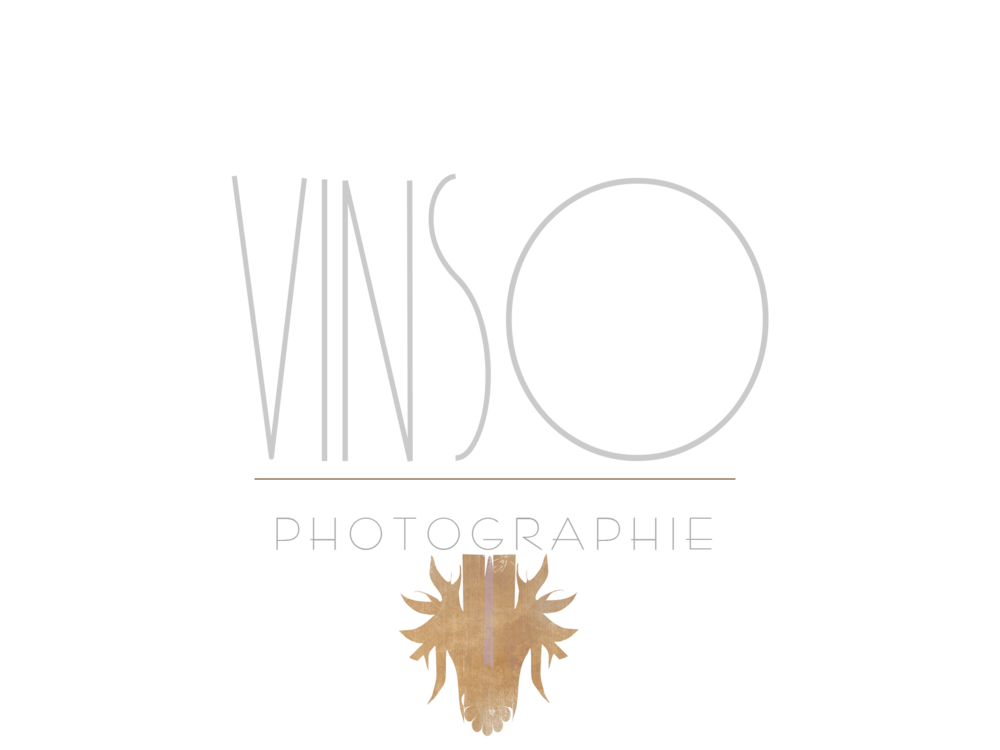 logo vinso final.png