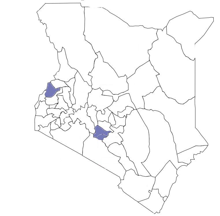 Cutout_transparent_MAP_CountiesIN-2019KenyaCounties.png