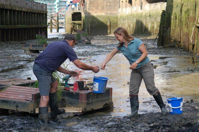 Thames wildlife superhighway ITV
