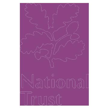 NT-Logo-purple.png