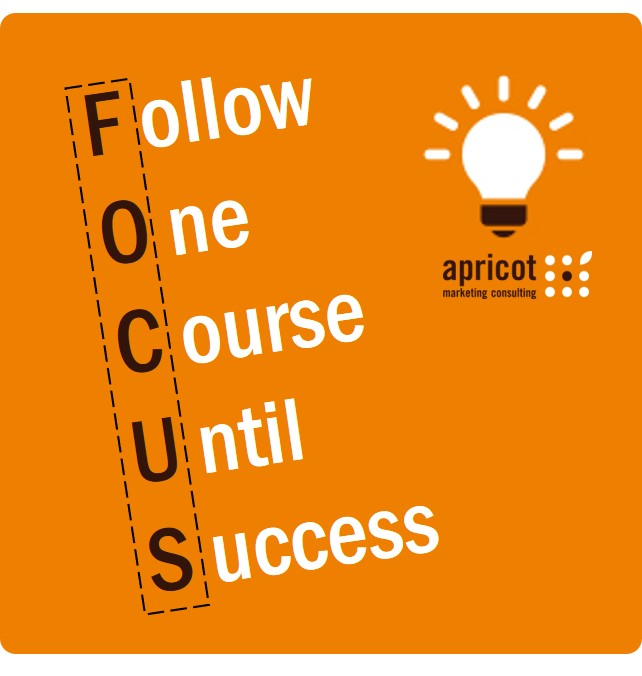 FollowOneCourseUntilSuccess_Focus_Nervenstärke_SonjaDirr_apricot.jpg