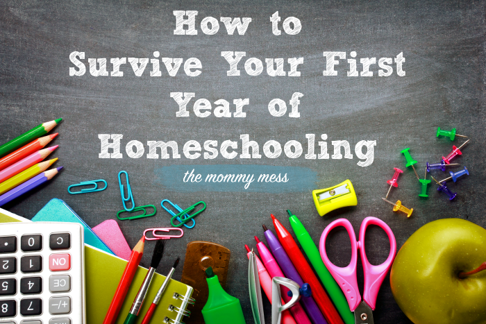 How to Survive Your First Year of Homeschooling