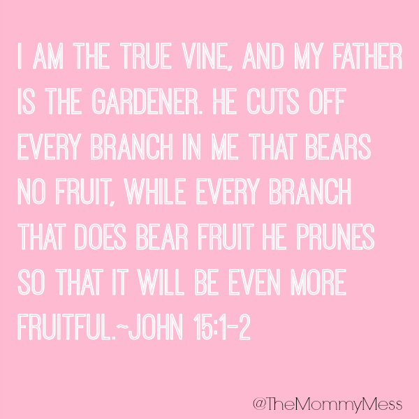 He is my gardener