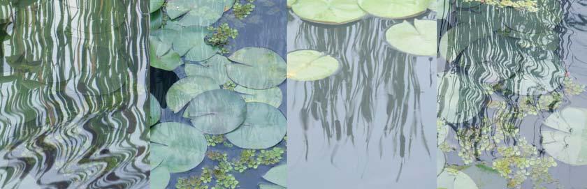 Pond Tableau V