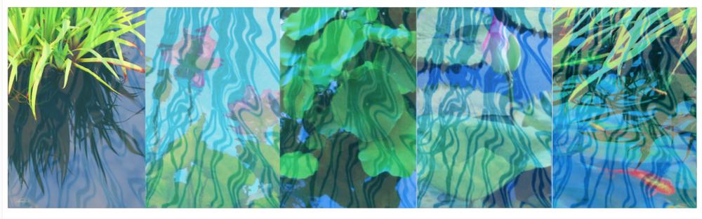 Pond Tableau VI