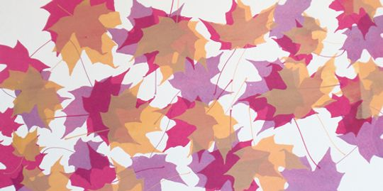 Autumn Leaves Series