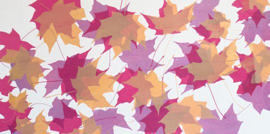 Autumn Leaves Series