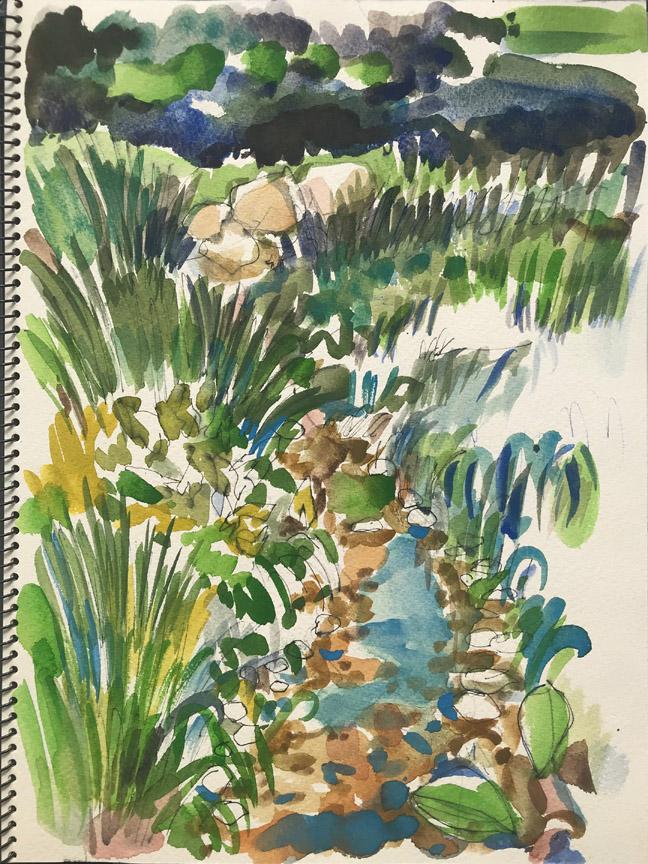 Pond Sketch I