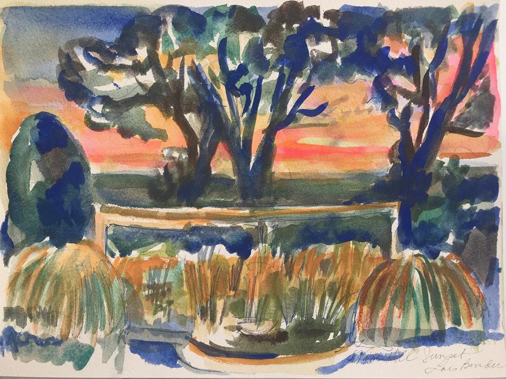 Pond VI