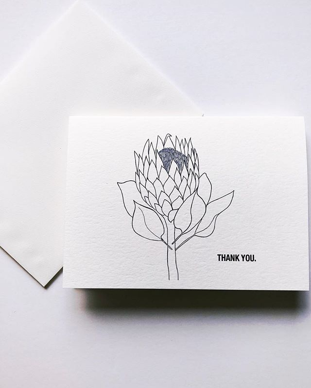 Illustrated protea for bridal shower thank you notes 🖤 #weekendcanvas