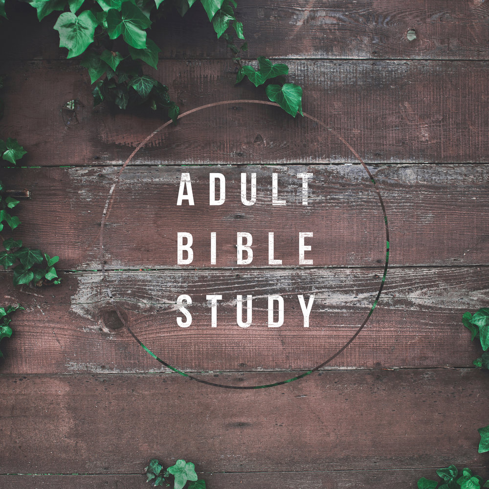 Adult Bible Study - Conference RoomThe Adult Bible Study class goes directly to the source for the Word of God, the Bible. Using the Uniform Series of International Bible Lessons as its guidebook, this small group delves deeply every week into the Bible.