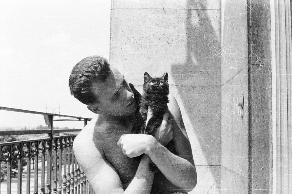 p with cat.jpg
