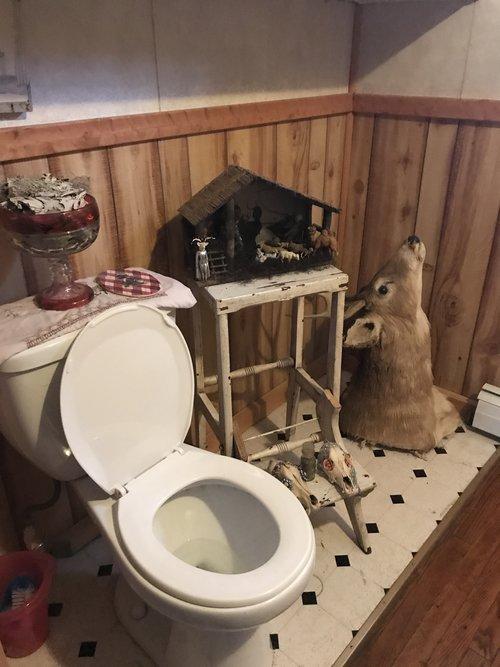 Taxidermy+Toilet-7.jpg
