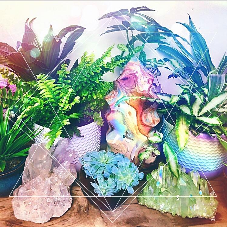 Crystals and Flowerws.jpg