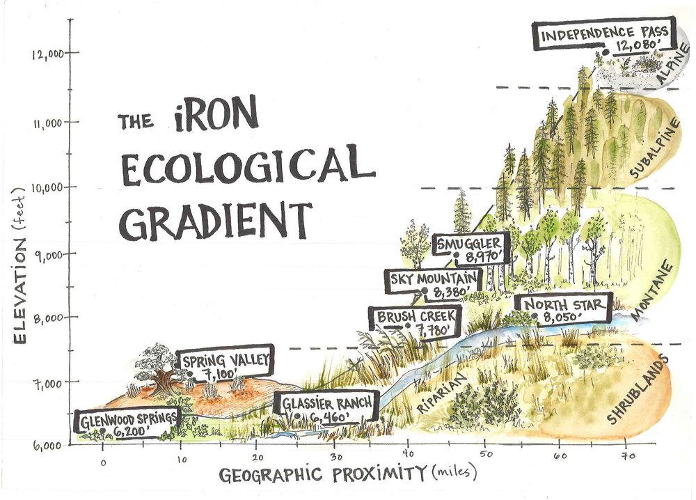 iRON Ecological Grandient (final) (1).jpg