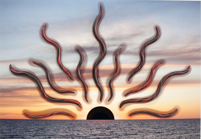"""Sun (red & black),  2018, Édition de 3, épreuve à développement chromogène et époxy, 12 1/4 x 14""""."""