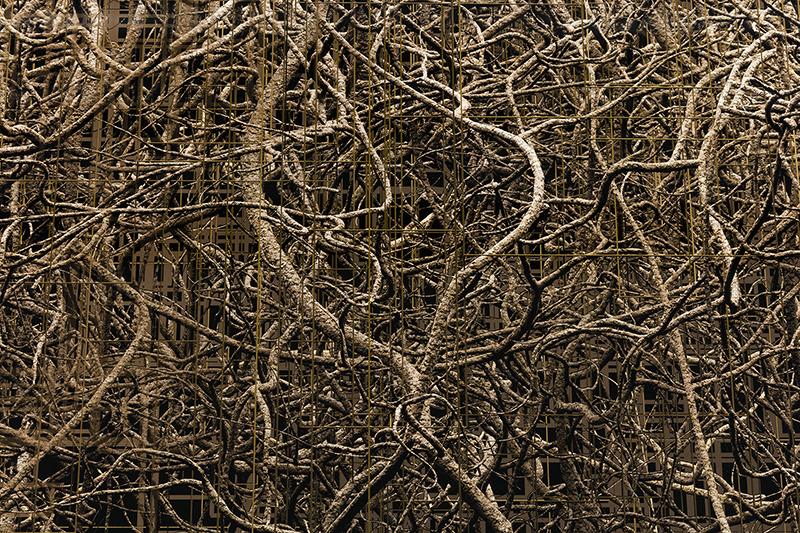 Synapses 03 , 2016, Impression au jet d'encre, acrylique, acier, 150 x 241 cm.
