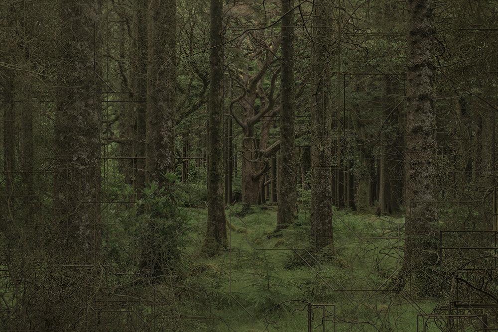 """Nicolas Baier,   Antérieur , 2018, Édition of 3, Impression photochrome sous plexi, 42"""" x 62""""."""