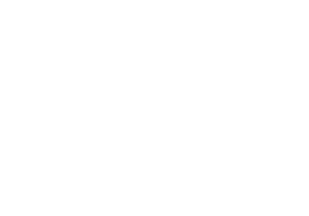 Kerri Carlquist Photography | Chicago Photographer
