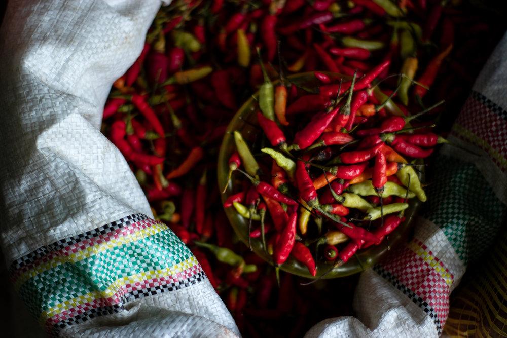 variedad de chiles