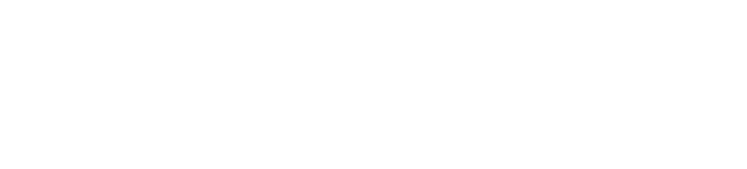 Professional Services Business Development