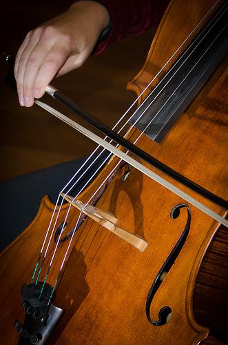 MetSO Double Bass