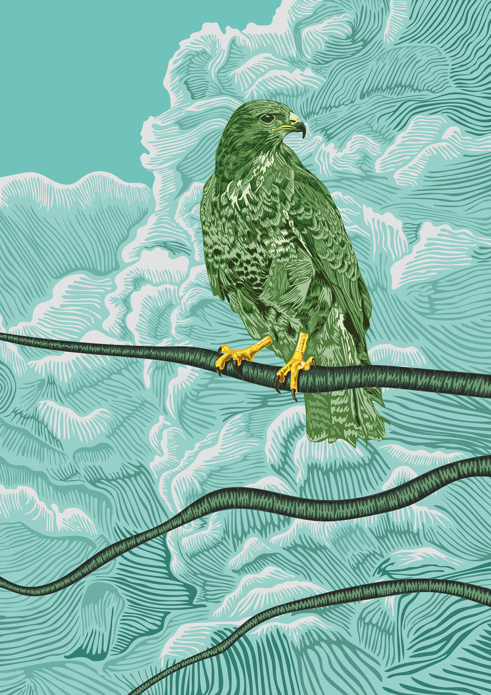 The-buzzard-in-the-dead-tree.jpg