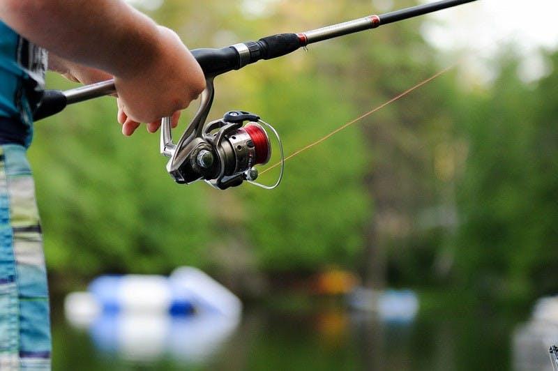 Fiske - Fishing
