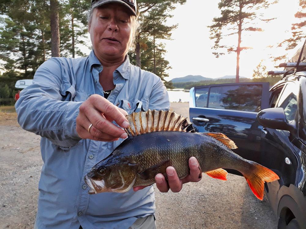 fisket1.jpg