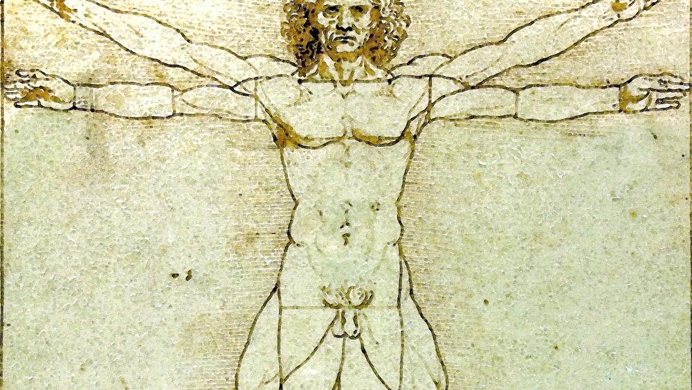 Anatomia-Medicina-Biomedicina-Investigacion-Medicamentos-Salud_187493145_26309437_1706x960.jpg