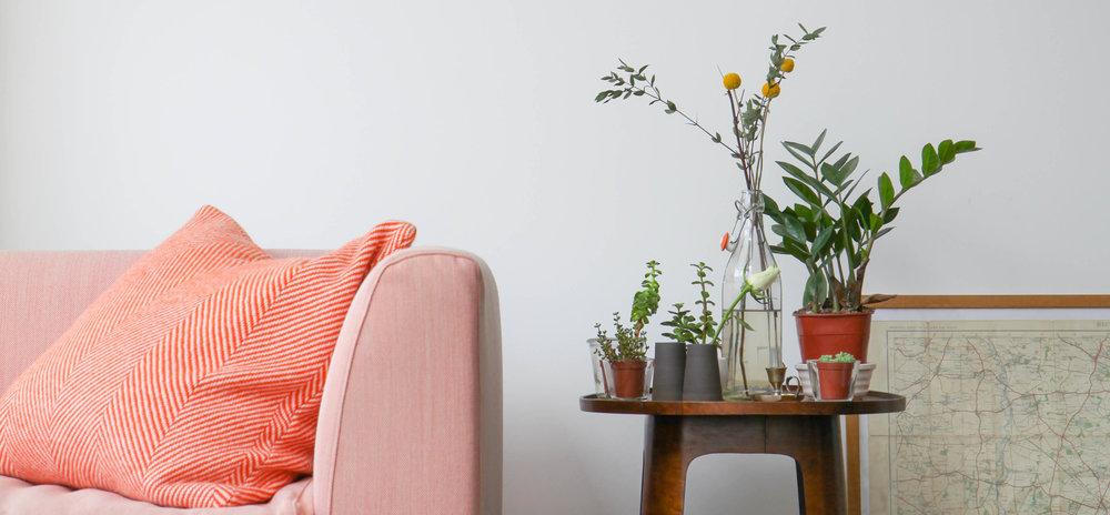 Glass menagerie: leftover jam jars, bottles and tea light holder plant pots (plus a Tangerine Orange Cushion)