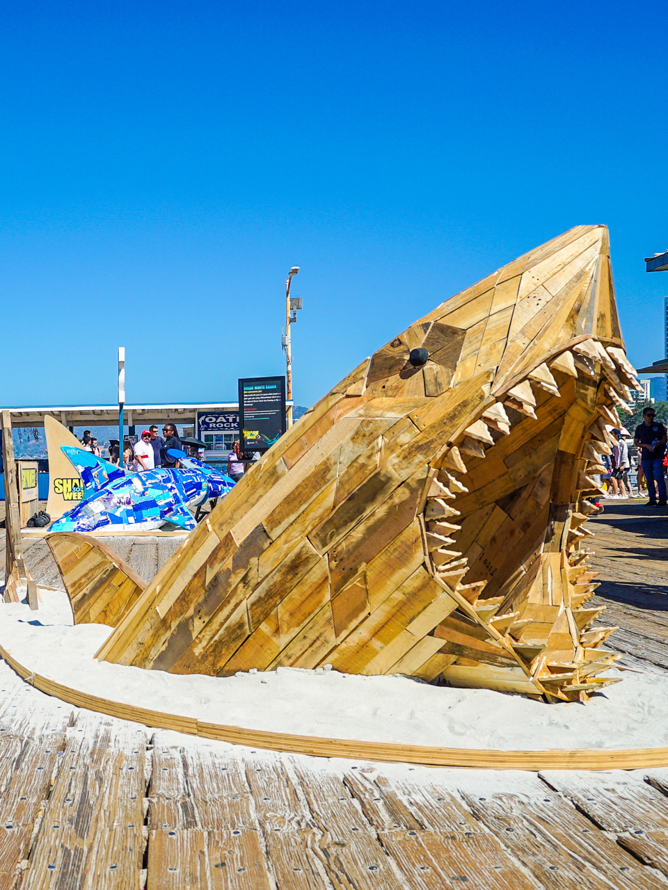 Discovery Channel: Shark Week 30th Anniversary by Berlin Cameron BCXP — Berlin Cameron