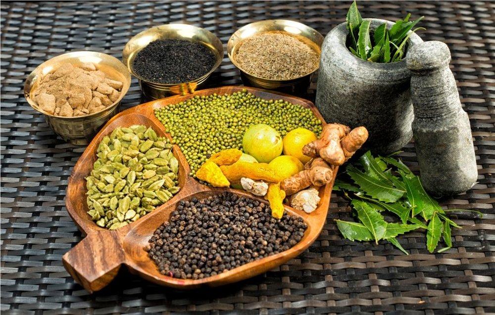 ayurvedic-herbs-photo-1024x652.jpg